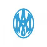Copia de Logo de Madelin